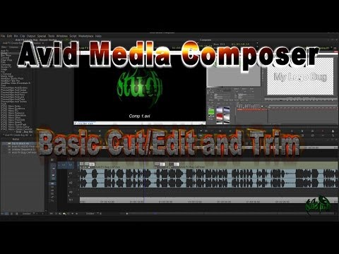 Media Composer - Basic Cut/Add Edit and Trim
