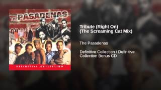 Tribute (Right On) (The Screaming Cat Mix)