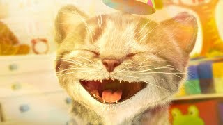 Download Little Kitten & Friends - Learn with the cutest cat! (Fox and Sheep) Part 12 - Best App For Kids Mp3 and Videos