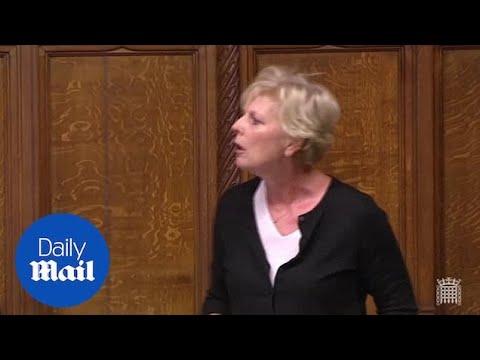 Former Brexit Secretary David Davis blasts EU in Commons speech
