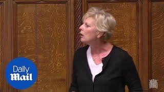 Former Brexit Secretary David Davis blasts EU in Commons speech - Daily Mail