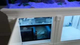 210g Aquarium Custom Made Stand, Canopy And Sump