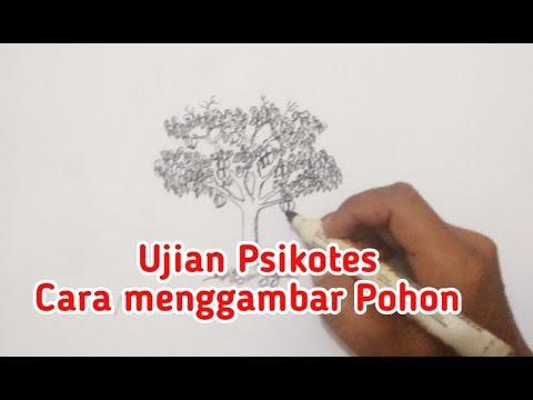 Psikotes Cara Menggambar Pohon Mangga Untuk Psikotes Masuk