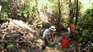 Where To Look For Gold #7 - Gold Mining in a Small Creek
