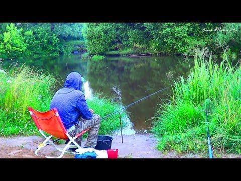 Рыбалка на небольшой речке🐟🐟, Ловля на Фидер 🐟🐟