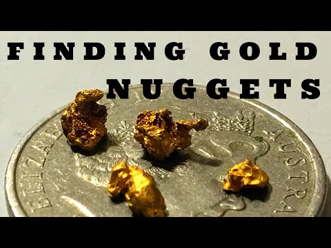 Gold Prospecting - The tropical north