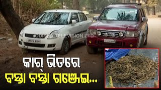 Huge Haul Of Ganja Seized From Expensive Cars In Bolangir