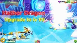 [HATHOR] Upgrade the Best Dragon to level 99 - Dragon Mania Legends