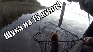 Болото Оршинский Мох, На Вездеходе Шерп, Коп, Рыбалка Ч3