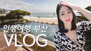 부산여행 브이로그/ 해운대 파라다이스 호텔 힐링하기♥ …