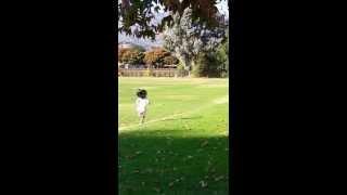 Running laps during PE.