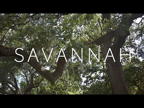Savannah travel guide