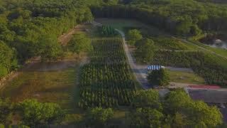 Leyden Farms & Vineyard