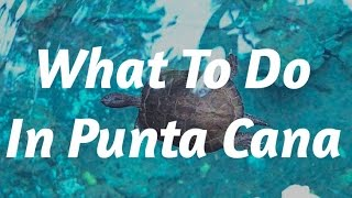 Top Tips Before Going To Punta Cana | Travel Guide