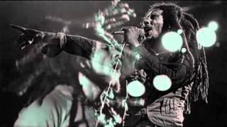 Bob Marley - Babylon System Subtitulado español