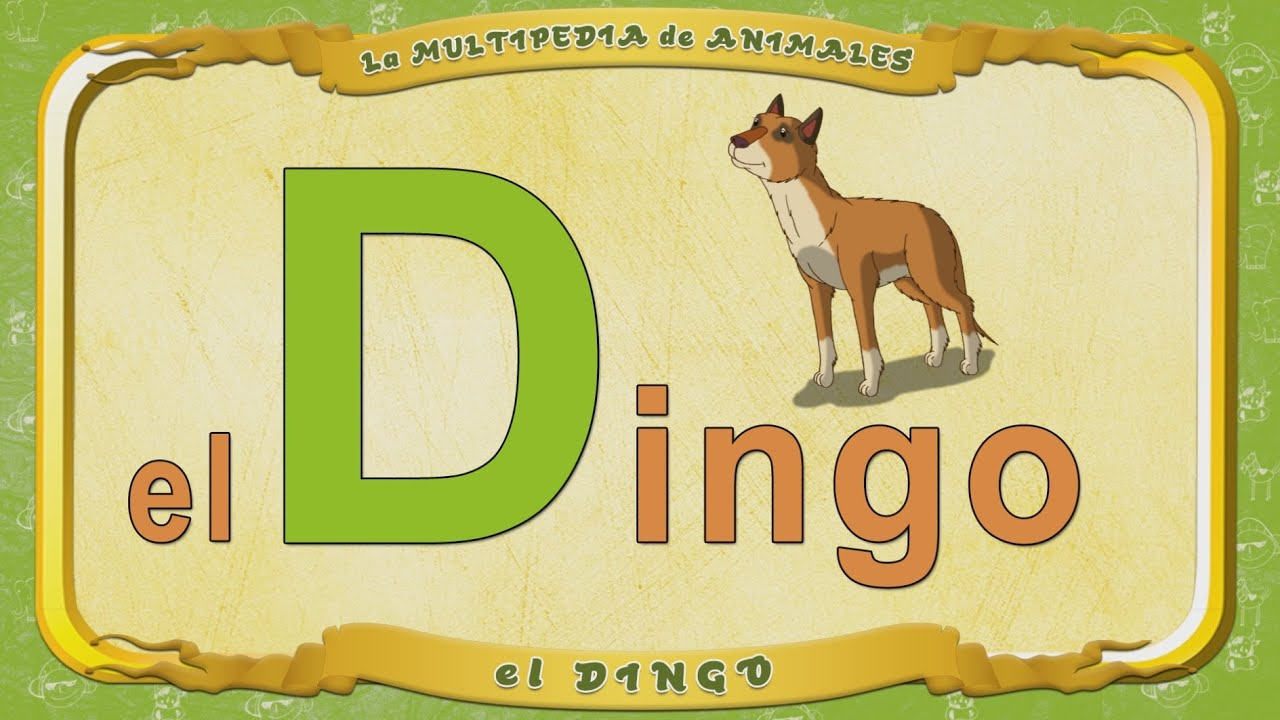 multipedia de los animales letra d el dingo youtube