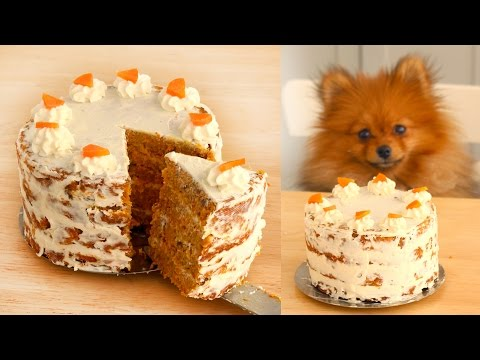 Carrot Cake FOR DOGS | RECIPE | Paddington's Pantry