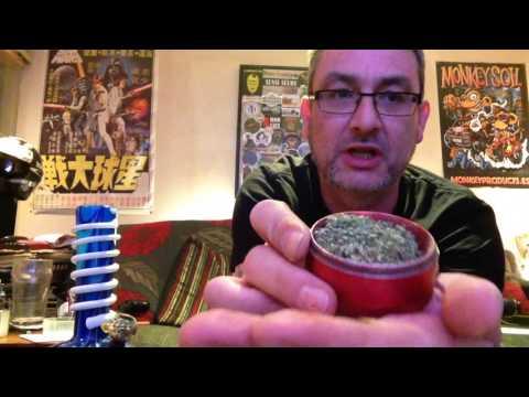 Amnesia Haze strain review.