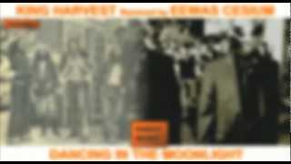 King Harvest - Dancing in the moonlight (Eewas Cesium Remix)