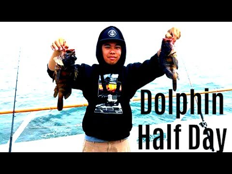 San Diego Fishing: Dolphin AM Half Day