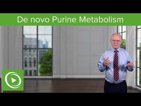 Nucleotide Metabolism: Introduction And De Novo Purine Metabolism – Biochemistry | Lecturio