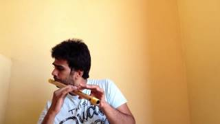 Galliyan | Flute Cover | Ek Villain