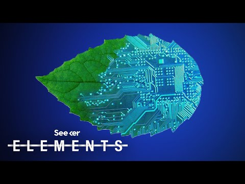 Artificial Leaf Technology Could One Day Power Our World