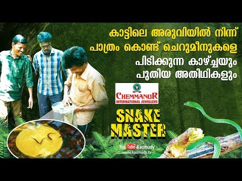 Sights of small fish being caught using plate and new guests | Snakemaster | Latest Episode