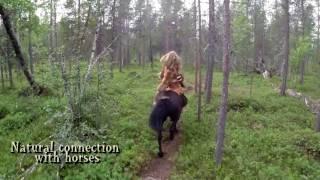 Arctic forest horseback archery