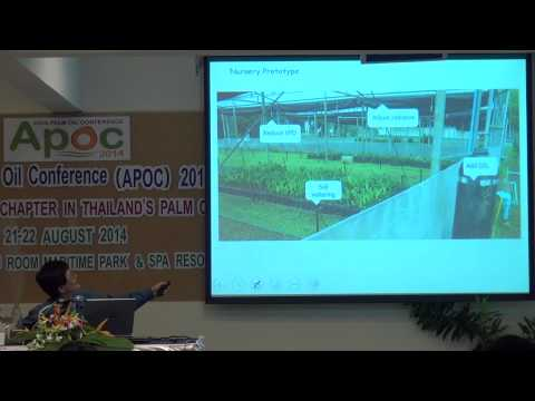 Integral application of physiology study of oil palm