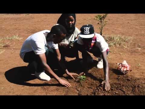 Daraja Ensemble to teach music, plant trees in Tanzania