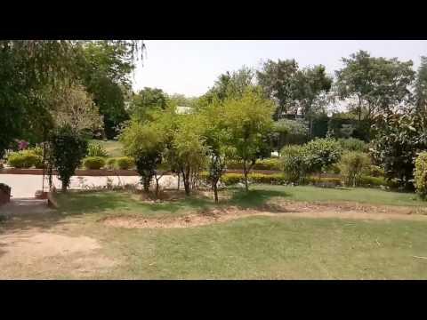 DCH Party Farm New Delhi