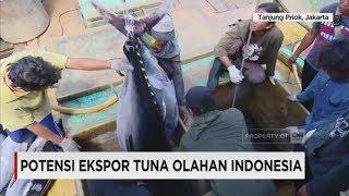 Video Potensi Ekspor Tuna Olahan Indonesia download MP3, 3GP, MP4, WEBM, AVI, FLV Januari 2018