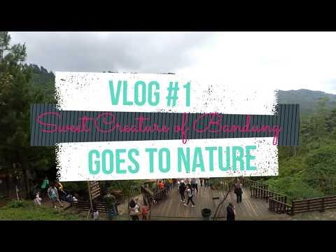 Back to Nature - The Lodge Maribaya, Dago Dream Park Lembang Bandung