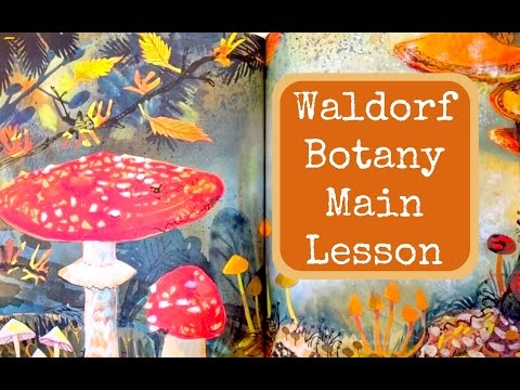 WALDORF MAIN LESSON BOTANY | UNIT STUDY PLANTS & TREES | HOMESCHOOL