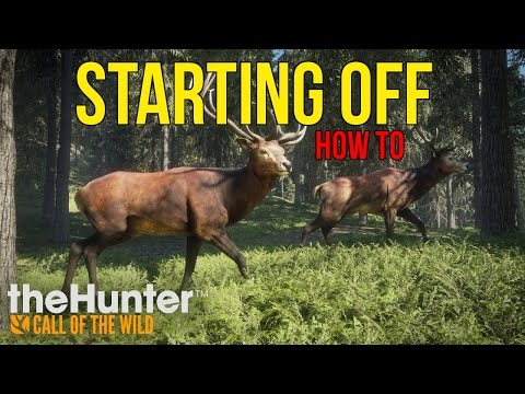 THE HUNTER: CALL OF THE WILD - HOW TO GET STARTED TIPS & TRICKS