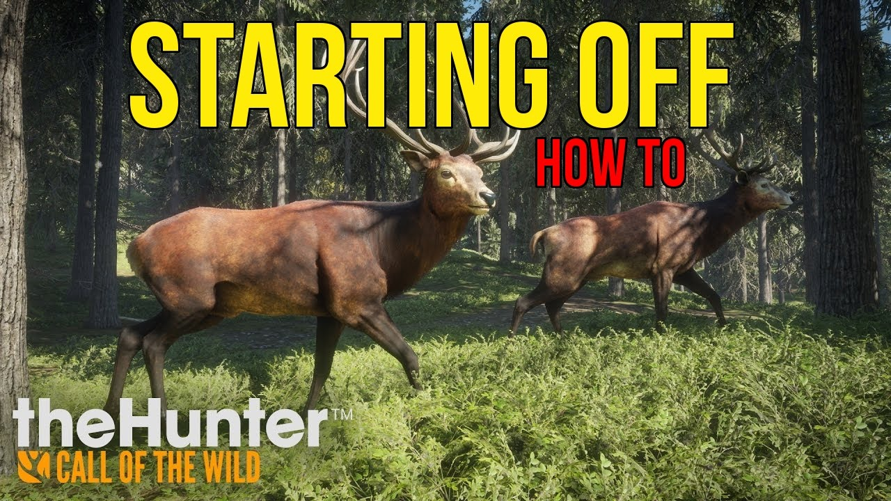 theHunter: Call of the Wild Cheats and Trainers for PC - WeMod
