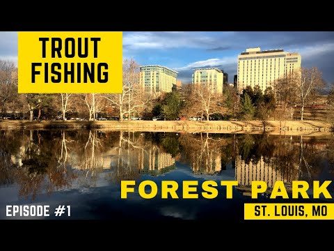Fishing For Stocked Rainbow Trout In Forest Park, St. Louis, MO
