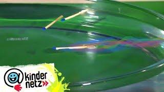 WissQuiz - Warum flitzt das Streichholz durchs Wasser? | Tigerenten Club | SWR Kindernetz