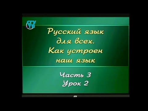Русский язык для детей. Урок 3.2. Слова родственные (однокоренные)