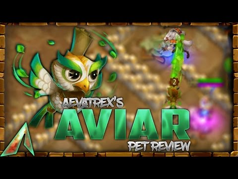 Castle Clash Pet FULL  Review! Aviar! Silencing Pet!