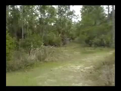 The Ultimate Disc Golf Show/ The S.W.Fl.Summer Am Series