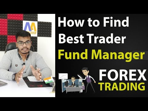 How To Find Best Trader In Forex Market ! Fund Manager In Forex Trading