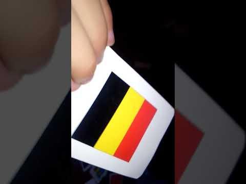 kid teaches 195 country flags