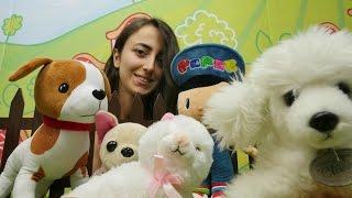 Türkçe izle-kız erkek çocuk oyunları/videoları.Sevcan ve çizgi film oyuncağı Pepe hayvan barınağında