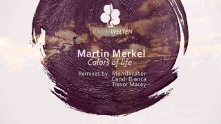 Martin Merkel Colors of Life Traumwelten Records