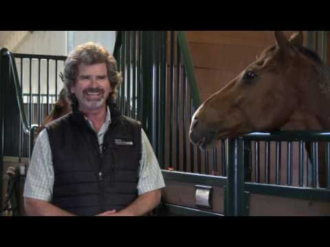 US Equestrian Rehab Center Selects Sheakley