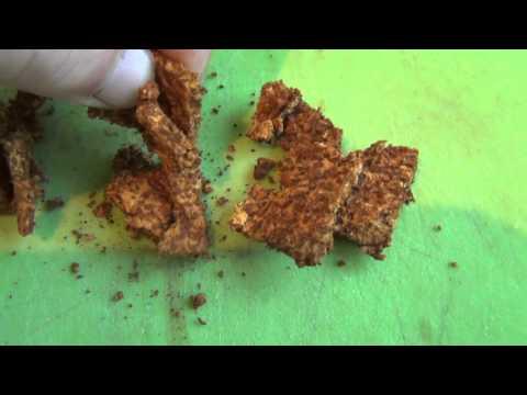 Лечебные свойства гриба чага » Ваш доктор Айболит