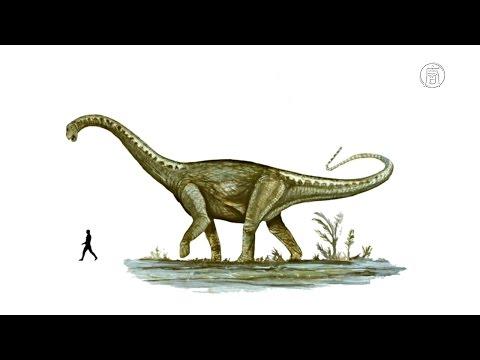 В Аргентине нашли гигантского динозавра (новости)