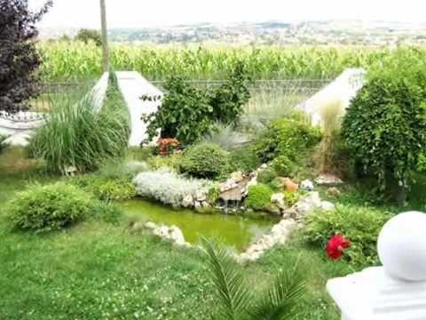 Mladenovac * TOM - Najlepsa dvorista, terase i baste objekta - YouTube